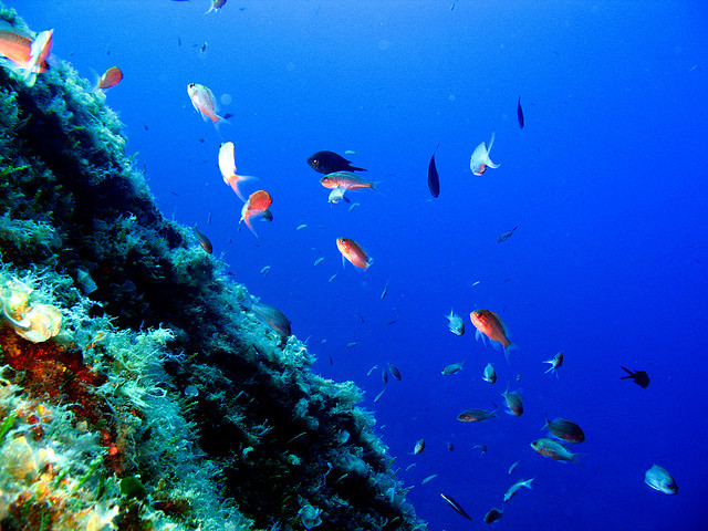 Устика - жемчужина Средиземноморья
