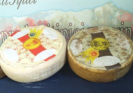Итальянский сыр Бра (Bra)
